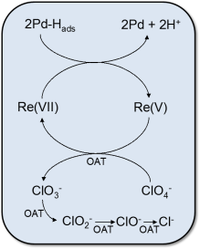 perchlorate-mechanism